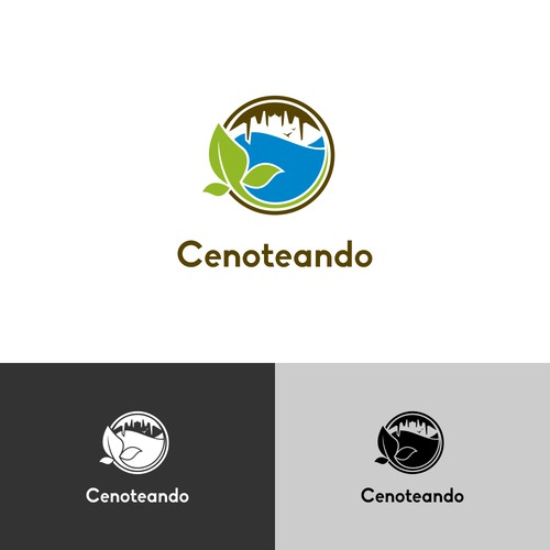 Logo Concept for Cenoteando