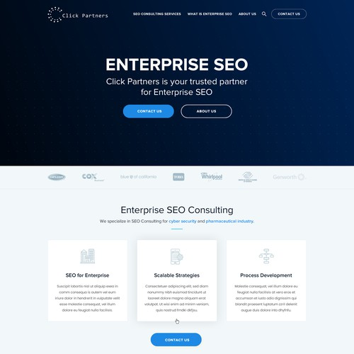 Website for SEO Consulting Firm