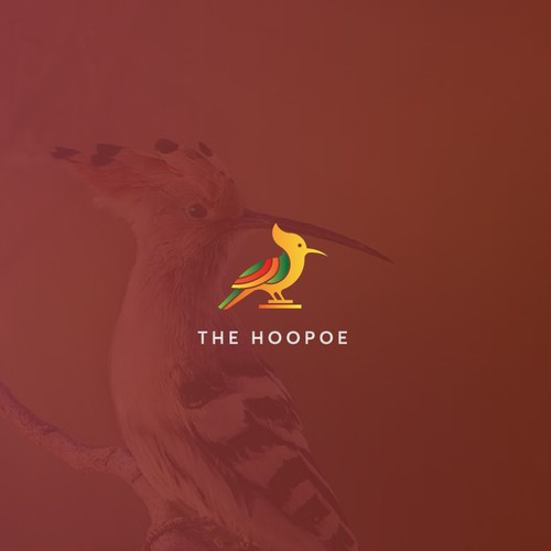 The hoopoe