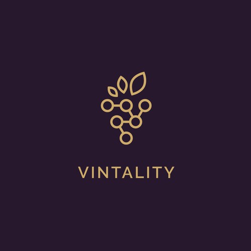 Logo for a Vineyard (wine) & Technology startup