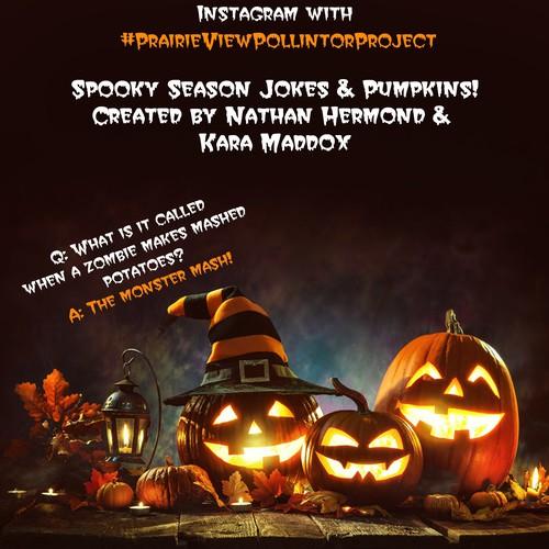 flyer pumpkins!