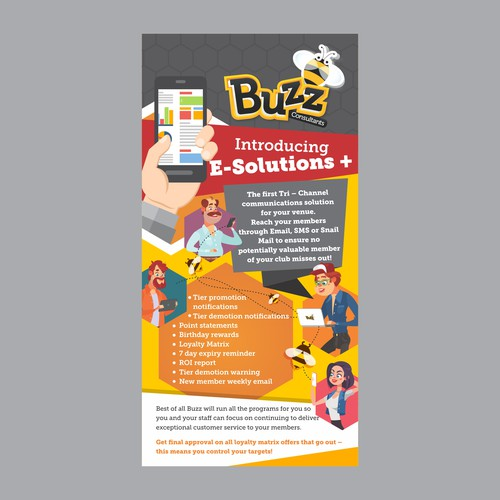Flyer design for an E- consultant