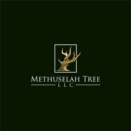 Methuselah Tree LLC - Icon to show strength and longitivtiy