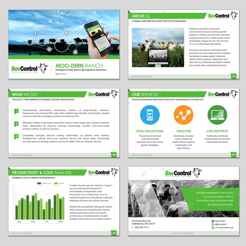 PowerPoint Template for a Fast Growing Startup