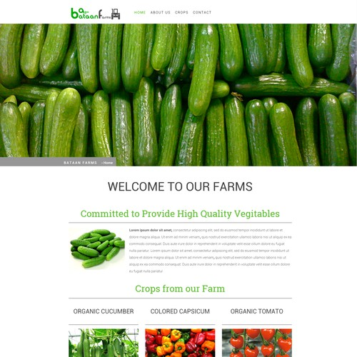 Responsive Web Template for Bataan Farms
