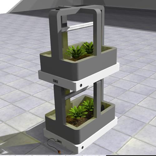 Indoor mini garden concept