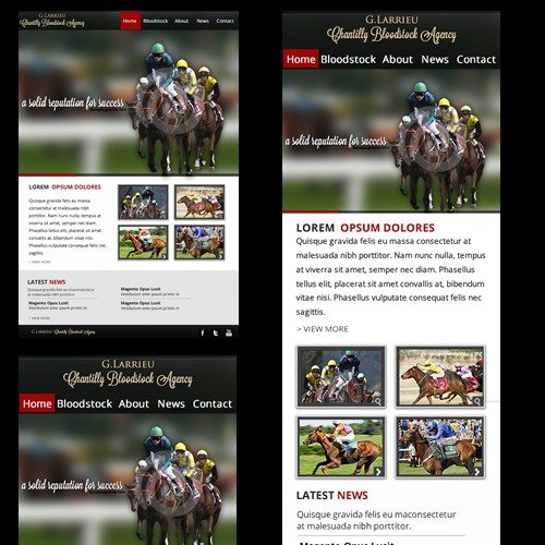 website design for Chantilly Bloodstock Agency (Responsive Web Design)