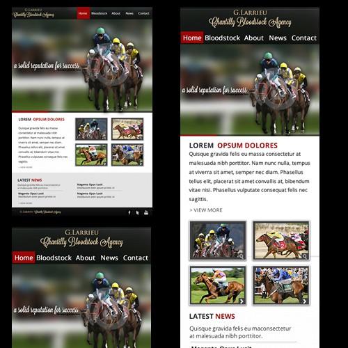 website design for Chantilly Bloodstock Agency (Responsive Web Design)