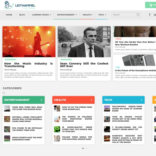 WordPress theme for a blog.