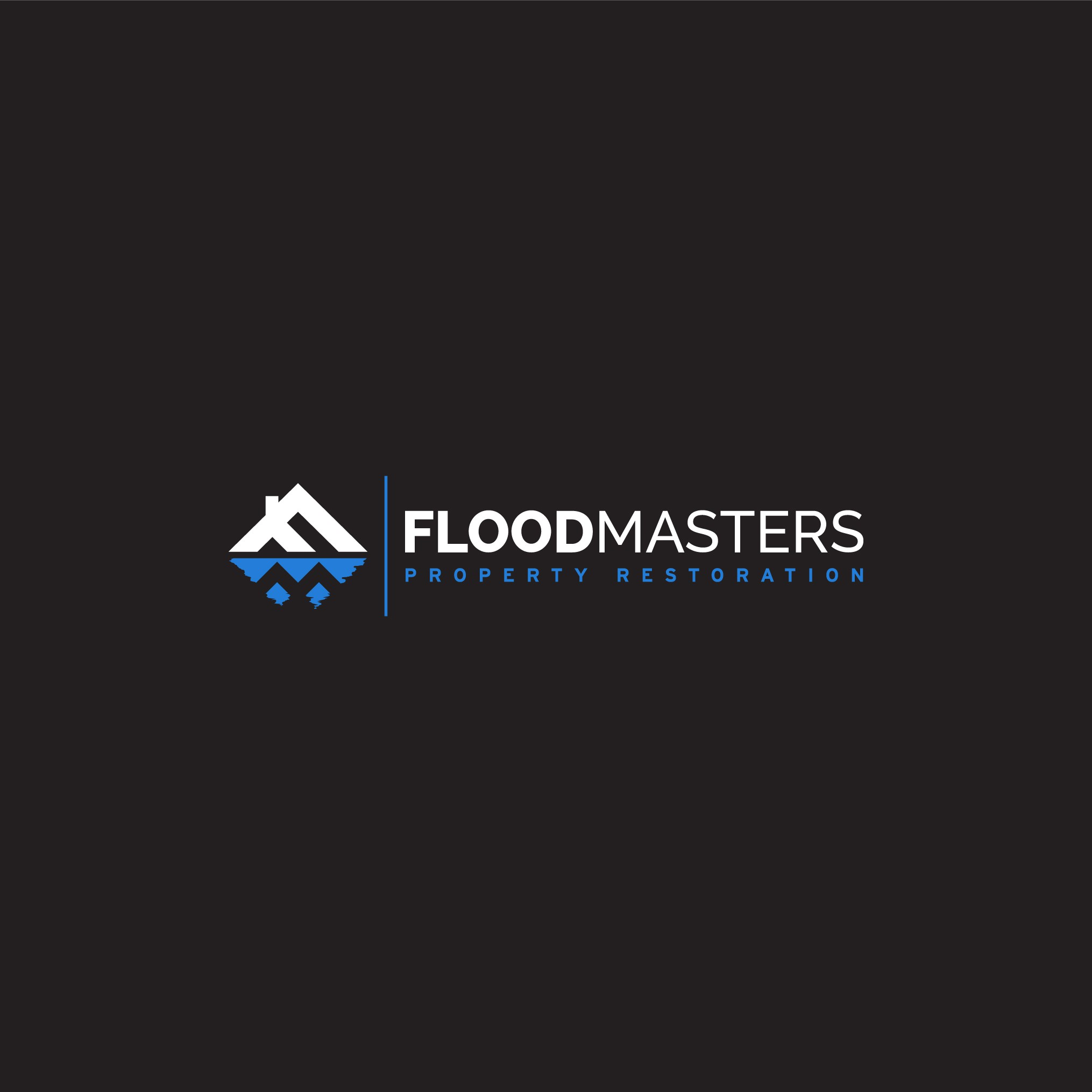 """Create the NEW logo for """"Flood Masters"""" Franchise Brand"""