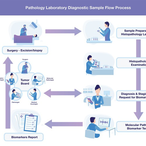 Illustrations for a Pathology Laboratory Diagnostics Process