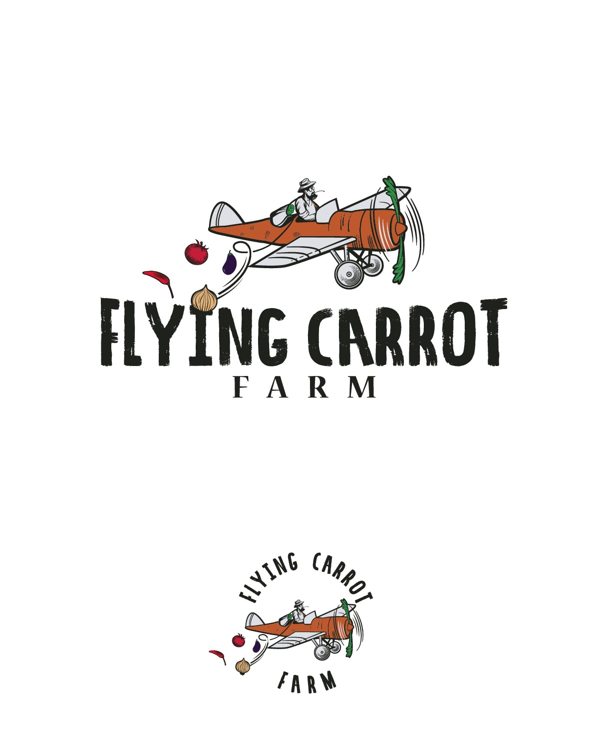 carrot airplane
