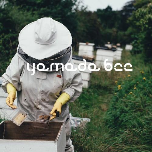 brand identity honey products