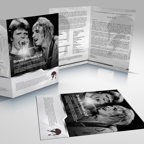 Bowie Ronson.Ltd Brochure
