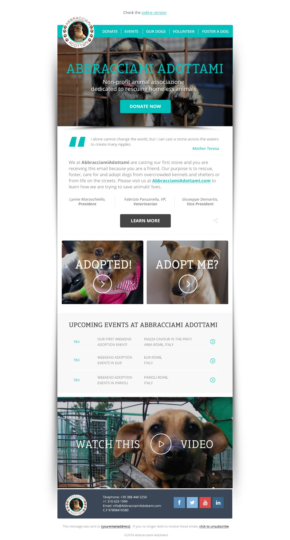 99nonprofits: Help Animal Non-Profit launch first email template