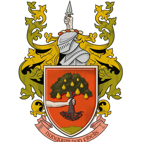 Irish family coat of arms