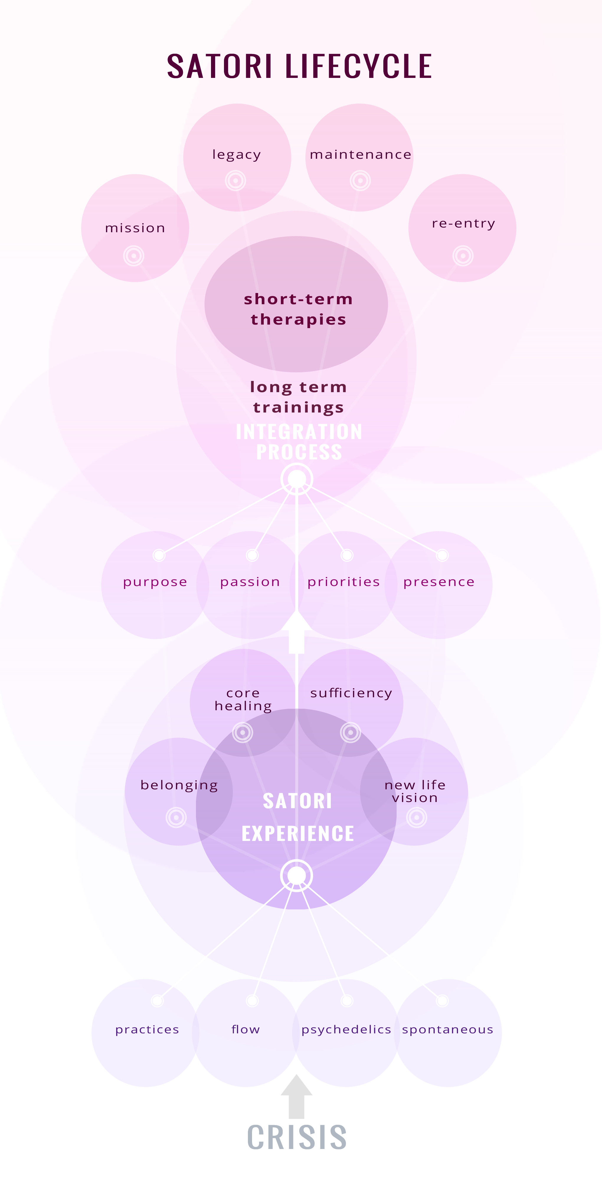 Integrative Psychiatrist Needs an Infographic For His Website