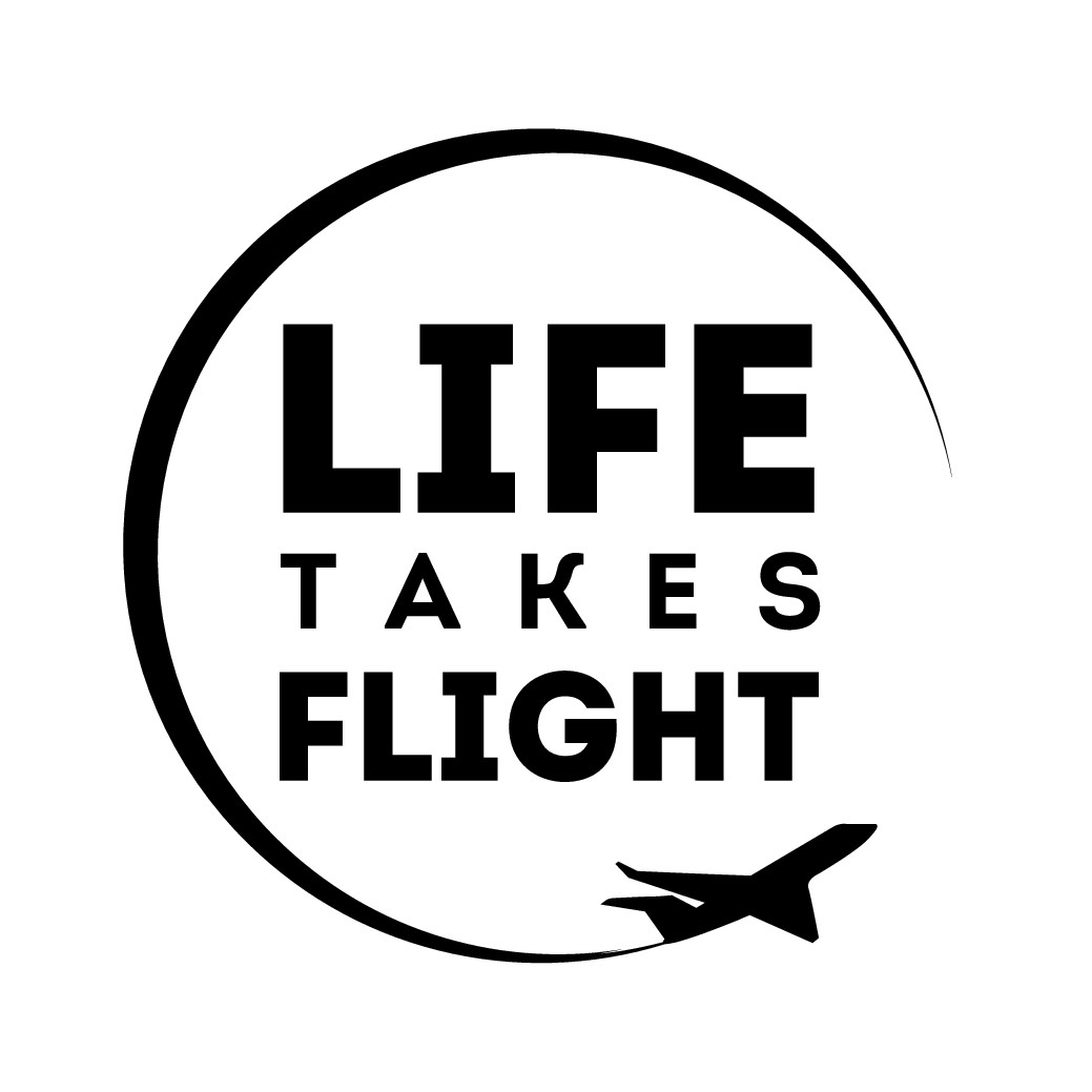 My new coaching and online course business helps people overcome the fear of flying... need a logo!