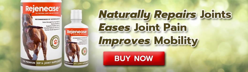 Pet supplements website banners