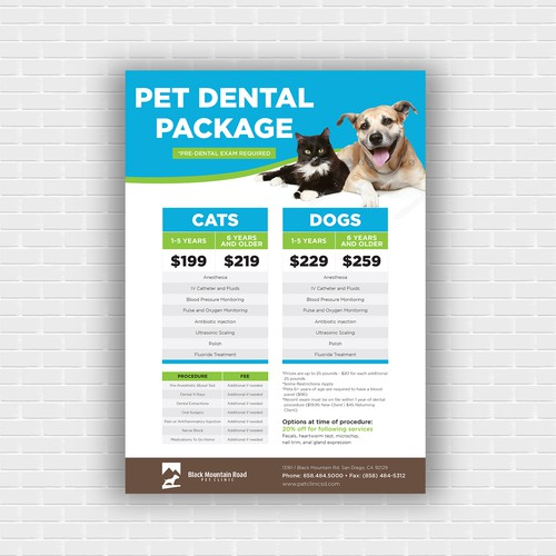 Flyer design for Pet Dental