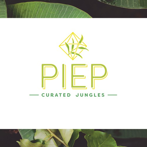 Modern, sleek logo concept for an exotic plant delivery service