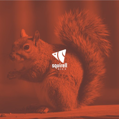 Squirell's squirrel