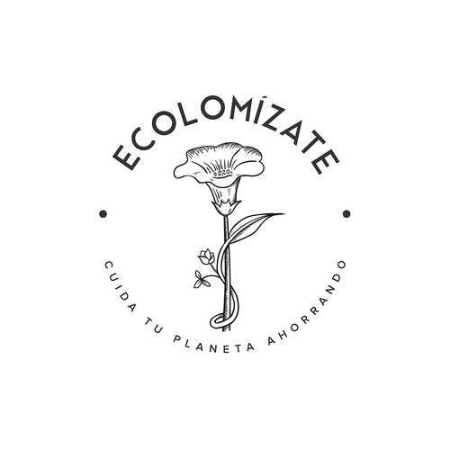 Logo concept for ECOLOMIZATE