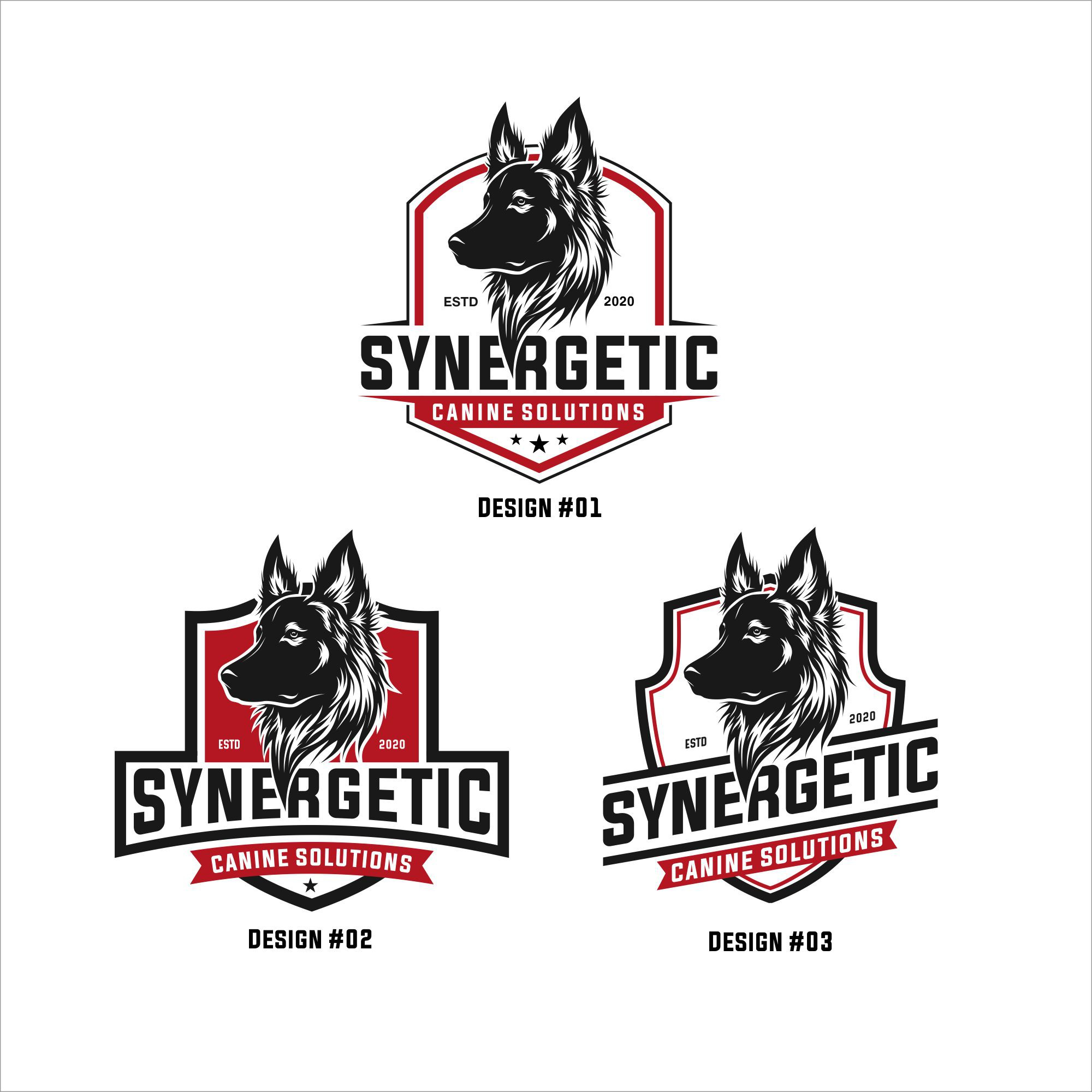 Top level canine trainers in need of a strong logo