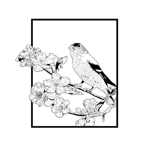Gold Finch t shirt design