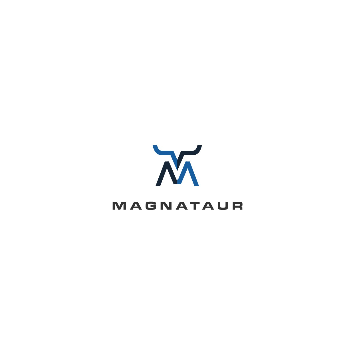 Magnatur - Transforming IT organizations from service providers to profit centers