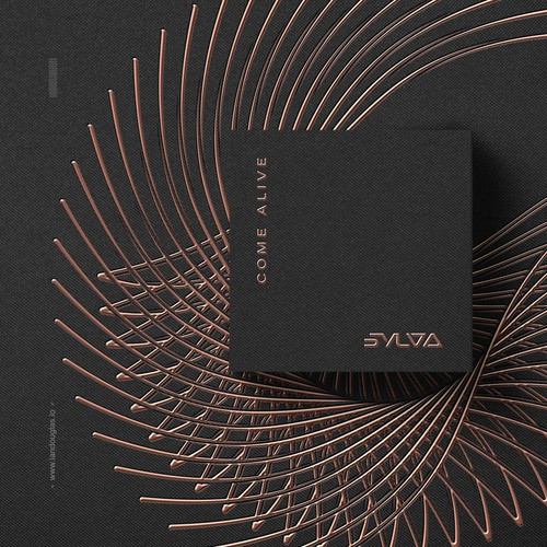 Wordmark and album art for pop/funk group SYLVA