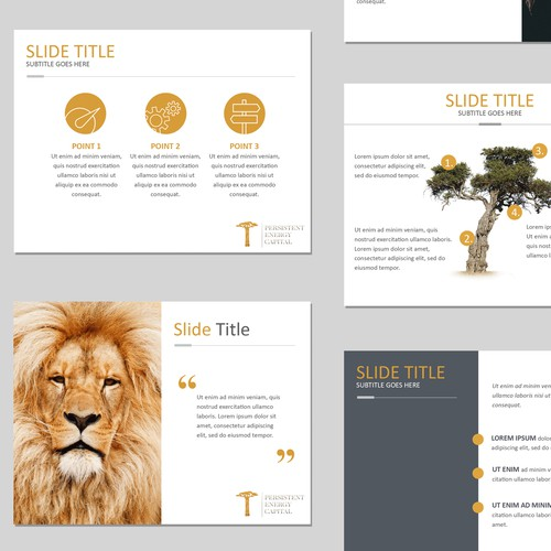 Presentation template for African Impact Venture Investor