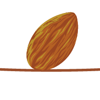 Favicon for The Balanced Nut