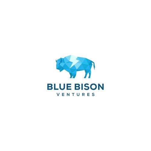 Blue Bison Ventures