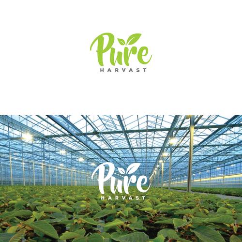 Pure Harvest LOGO Design
