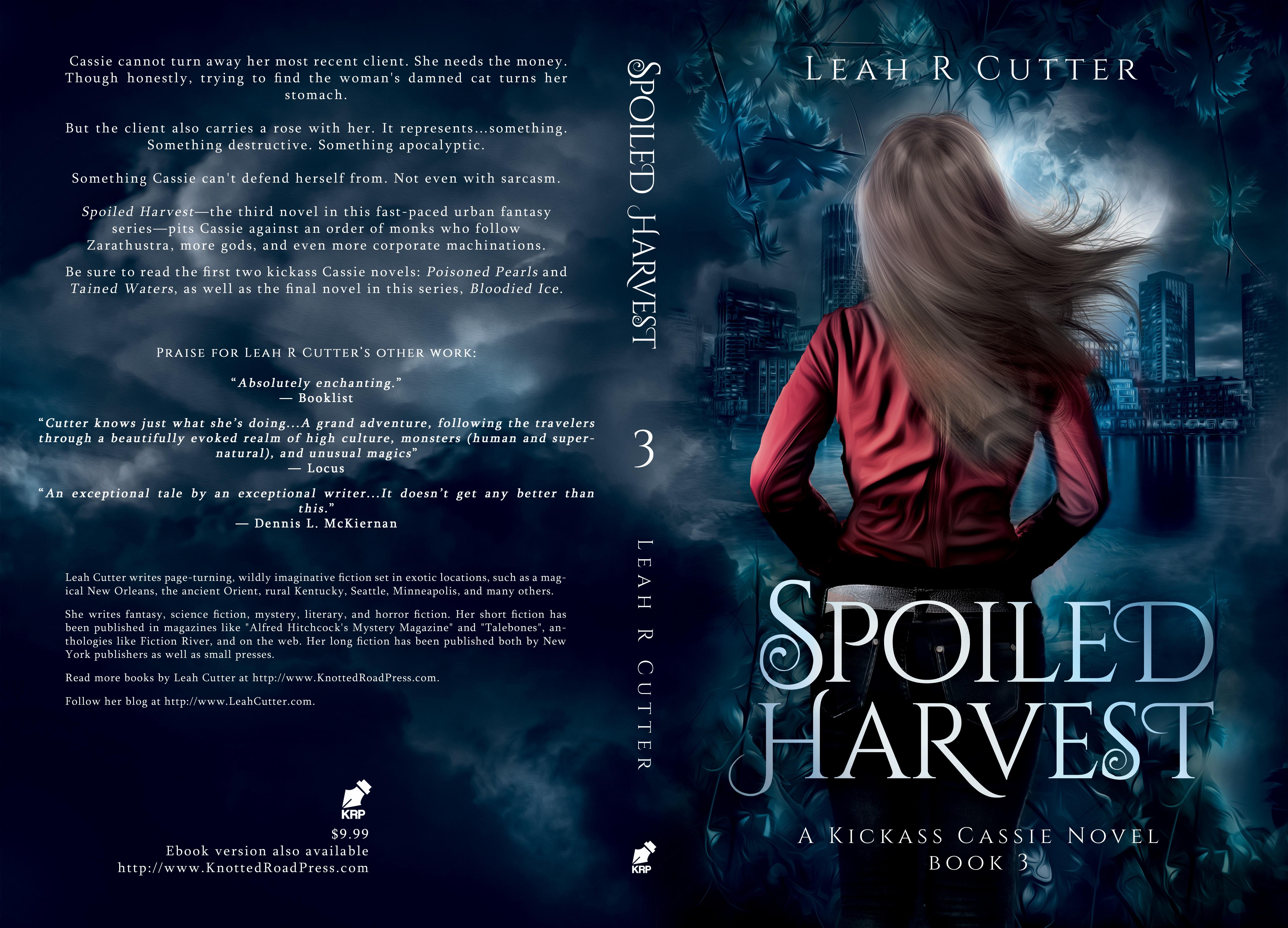 Third Cassie Novel Cover