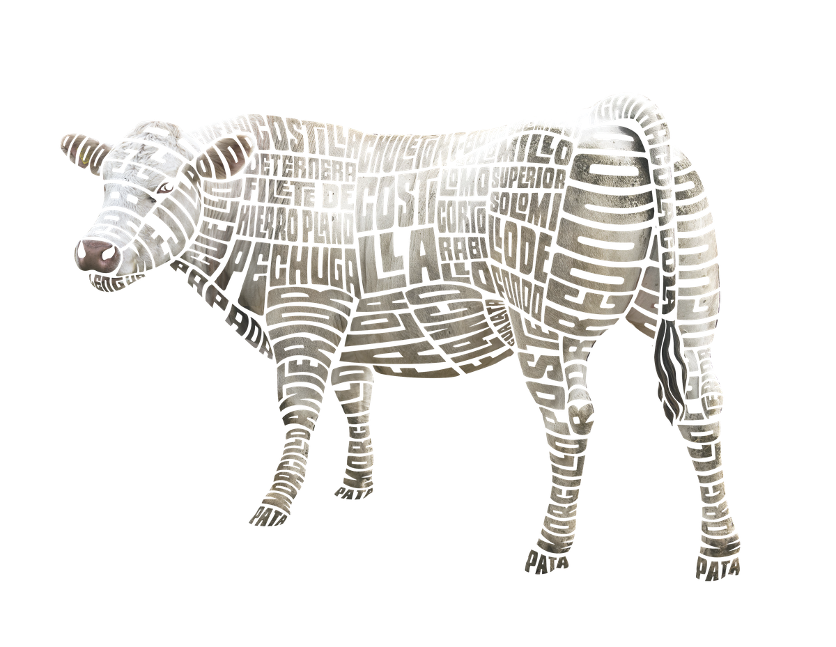Typographic Cuts of Beef
