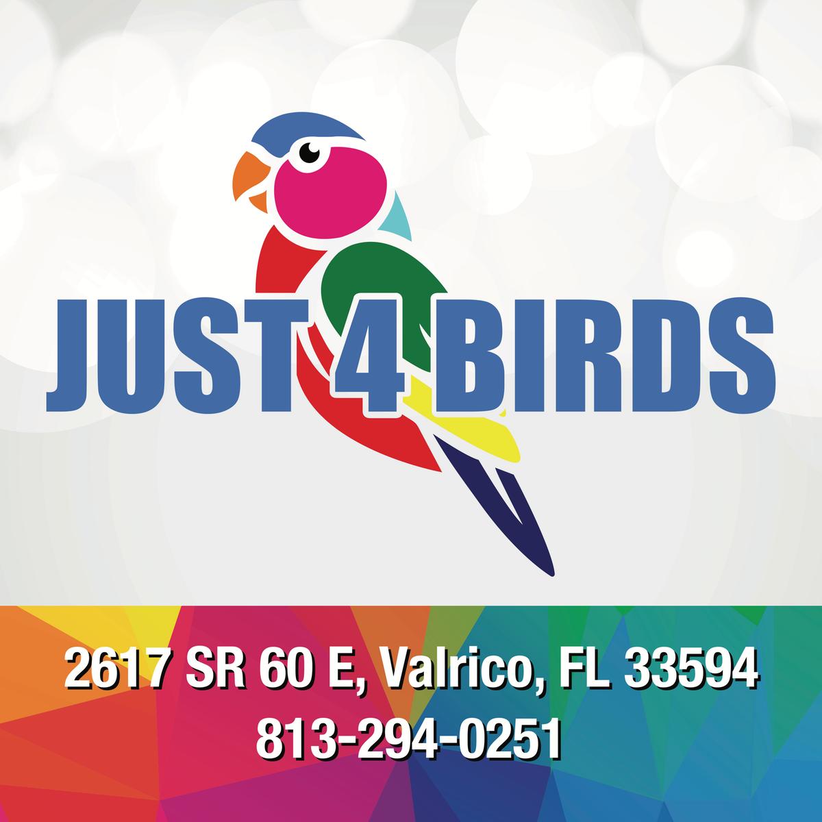 Just4Birds