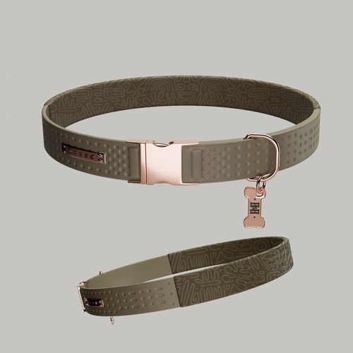 Dog Collar 3d Modelling & Design