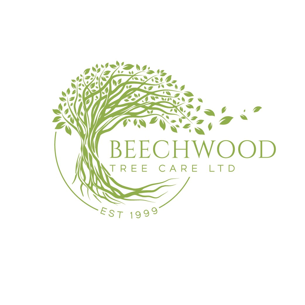 Beechwood Tree Care needs a professional, sophisticated new logo