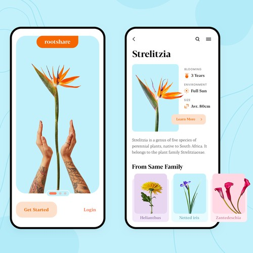 Rootshare • Plants App