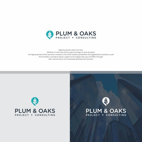 Plum & Oaks Project Consulting