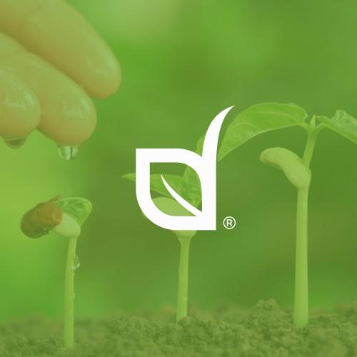 Seeds Company | AGL Seeds.
