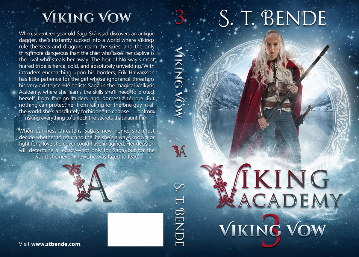 Viking Academy: Viking Vow  (Book 3)