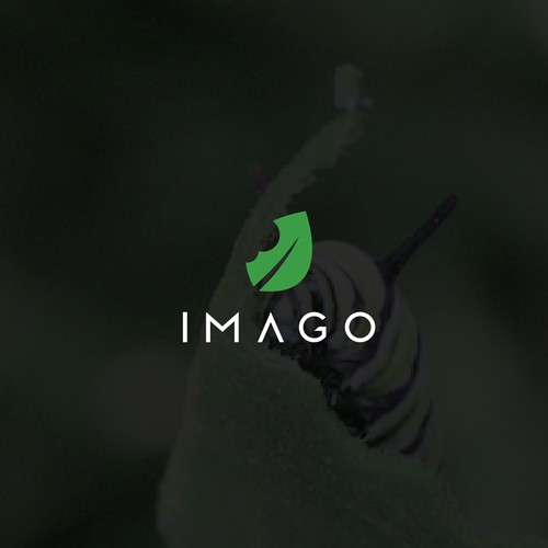 Unique Logo concept for IMAGO