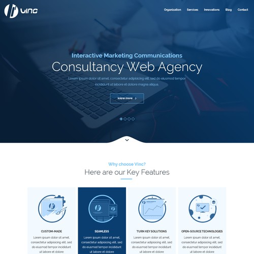 Consultancy Site for Vinc