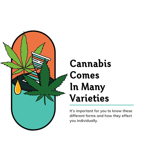 Medical Marijuana Book Layout Design for Veriheal