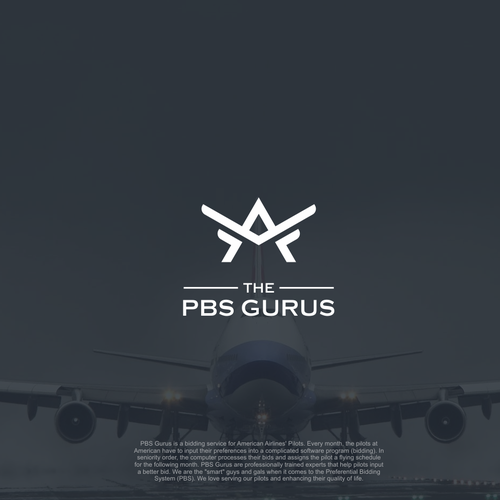 simple line art of plane logo for PBS GURUS