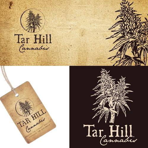 Tar Hill