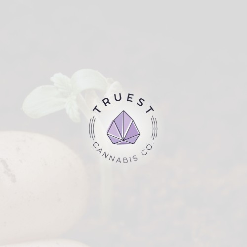 Modern logo for cannabis growing brand